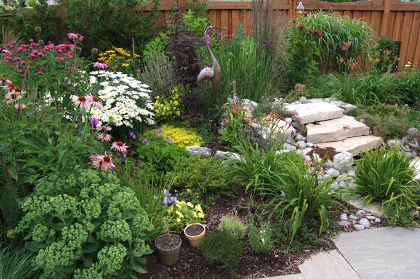 Suburban Oasis - going grassless doesn't mean you can't have beautiful gardens. Choosing the right drought tolerant plants and combinations can transform a grub infested lawn into a beautiful oasis.