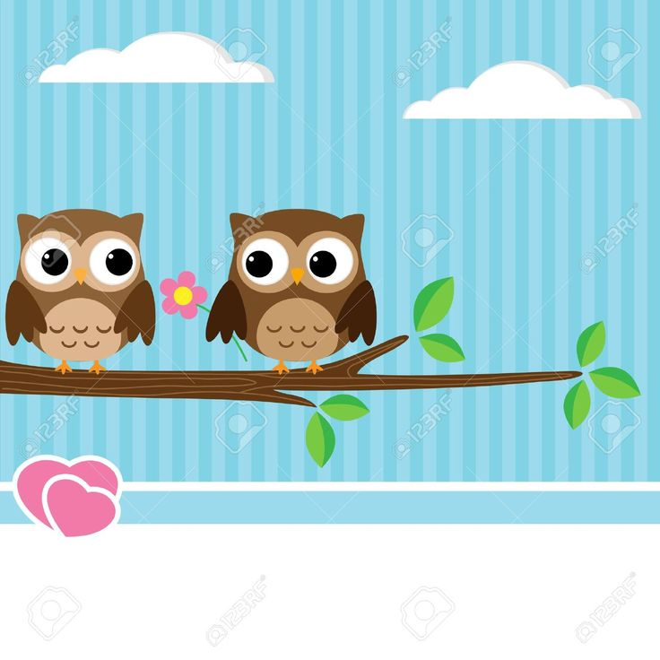 cute owl: Background with couple of owls sitting on branch