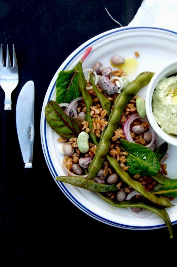 warm whole bean farro salad with raw horseradish cream