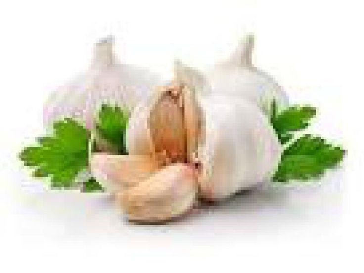 Uskladnenie cesnaku - Vaše rady a tipy - Ako sa to robí.sk