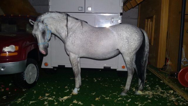 Brigitte Eberl - Page 51 - Resins - Model Horse Forum of MPV