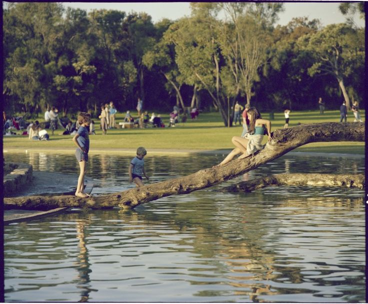 336013PD: Playground in Kings Park, Perth, 30 August 1982 https://encore.slwa.wa.gov.au/iii/encore/record/C__Rb4640639