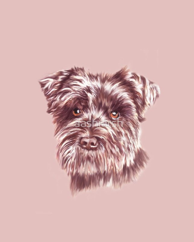 Miniature #Schnauzer #Dog Water Color #Art #Painting #portrait #pet #animal #pets #canine #dogs Design available on many products. Check our store.
