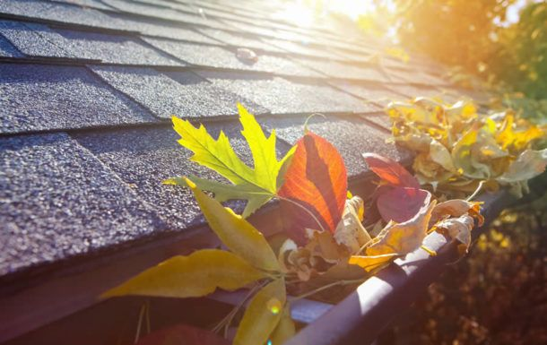 Roof Inspection Solutions in Ann Arbor