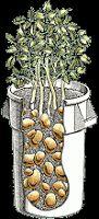 Blah-Blah-Blogger: Barrel of Spuds -- A Mrs. Potato Head Special