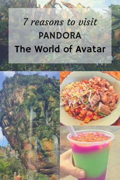 Pandora The World of Avatar | Disney's Animal Kingdom | Walt Disney World | Travel with kids