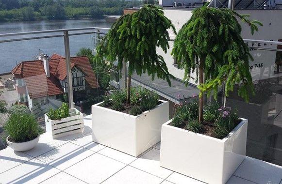 Doniczki Ogrodowe Duze Do Salonu Na Taras I Balkon Donice Meble Pl Plants