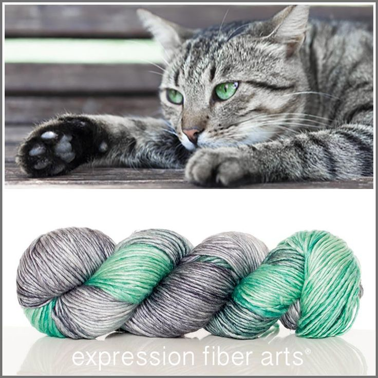 Expression Fiber Arts, Inc. - CATNAP SUPERWASH MERINO SILK PEARLESCENT WORSTED yarn - CATNAP - silver and charcoal gray tones and gorgeous green - awwww..... what a cute little snuggle bug!, $30.00 (http://www.expressionfiberarts.com/products/catnap-superwash-merino-silk-pearlescent-worsted.html)