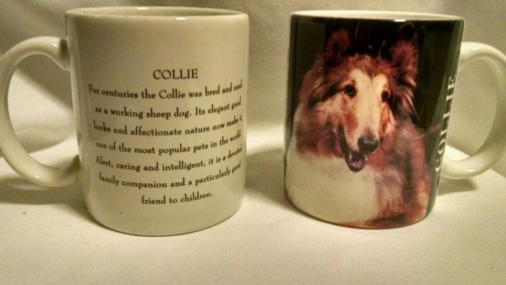 2 Collie Mugs Cups Xpres Corp 1992 Coffee Tea Dog #xpres