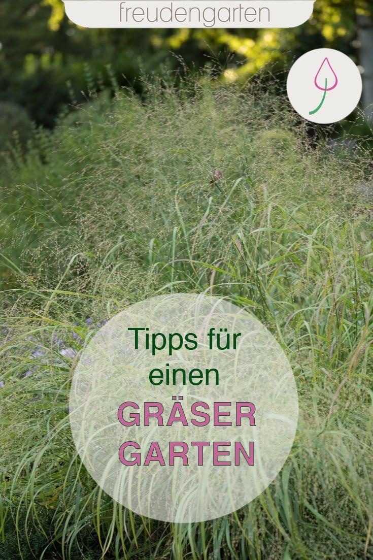 Ziergraser Fur Den Garten Garten Gestalten Graser Im Garten Garten
