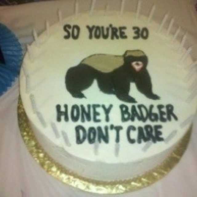 Genius. If you don't know Honey Badger humor, you don't watch enough YouTube.