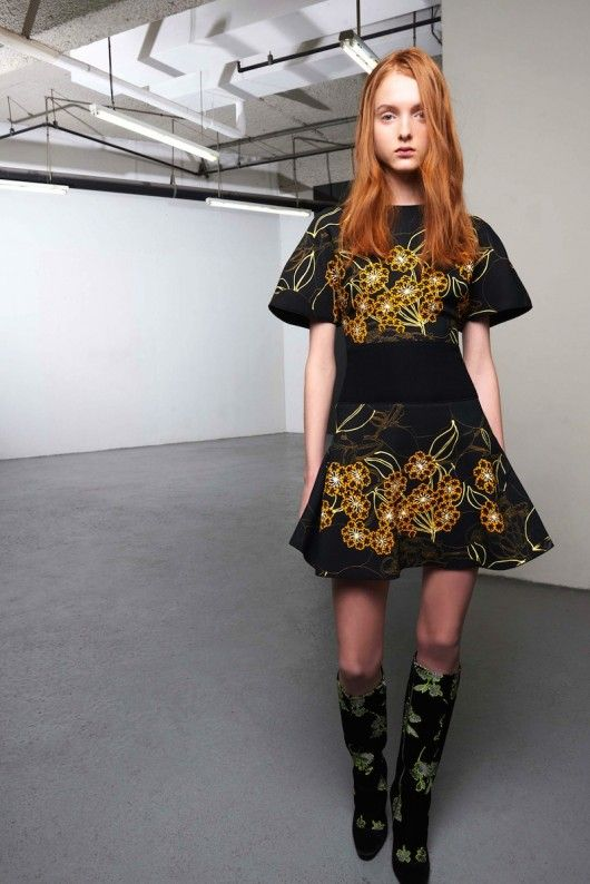 Giambattista Valli Pre-Fall 2015 (16)  - Shows - Fashion