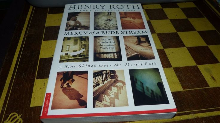 MERCY of a RUDE STREAM: A STAR SHINES OVER MT. MORRIS PARK HENRY ROTH pbk