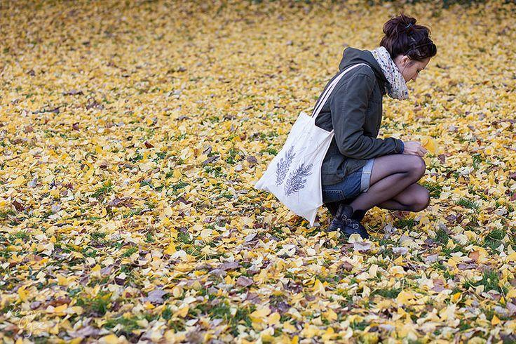 Autumn   Flickr - Photo Sharing!
