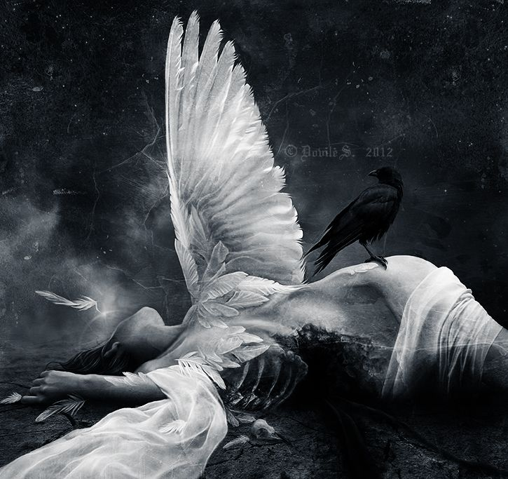 Where Dead Angels Lie by D-S-InfernalFrost.deviantart.com on @deviantART