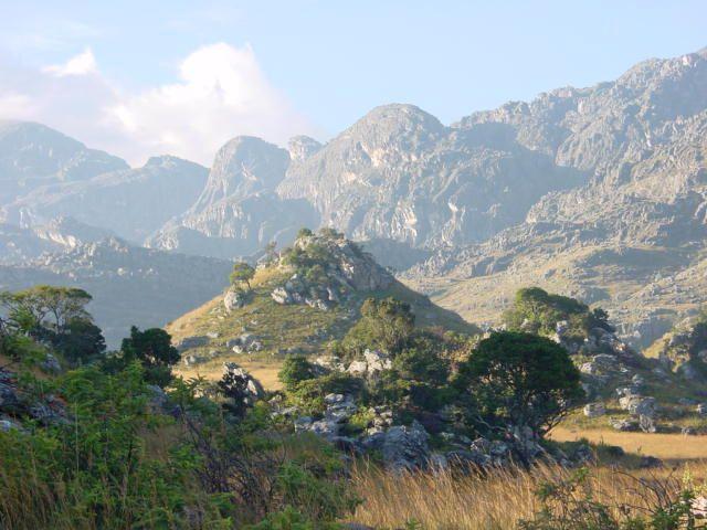 zimbabwe - Google Search  Chimanimani Mountains