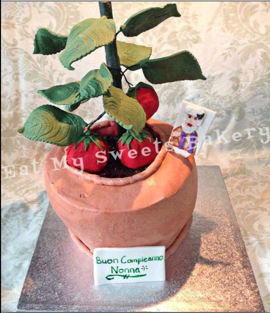 Potted Tomato Plant Cake
