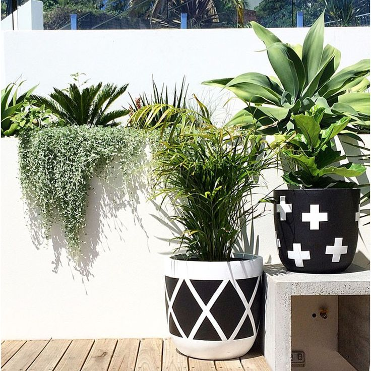http://thethirdrow.com/static/img/products/pot-cross-pot-in-black-white-by-the-design-twins-611069.jpg