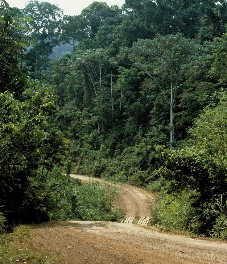 131 Best Images About Gabon, Libreville On Pinterest