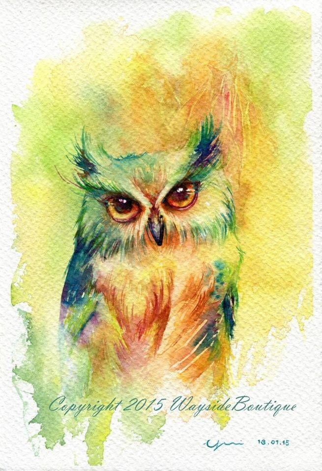 460 best watercolor birds images on pinterest water for Night owl paint color