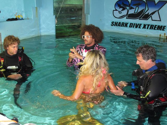Celebs in with our sharks and Rays....Red Foo of X-Factor and LMFAO fame shoots his new video at Manly Sea Life Sanctuary...