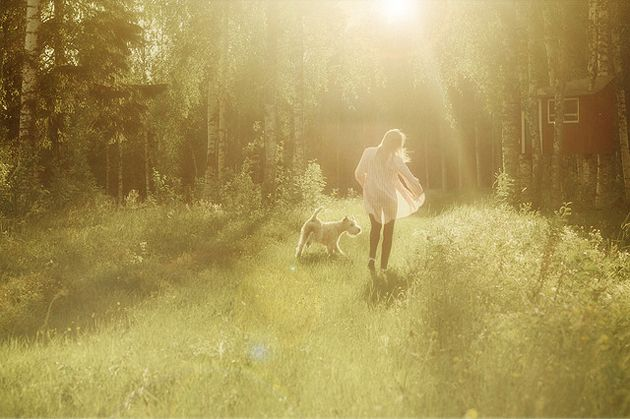 I like the way you see.: Lights, Kiss, Anna Ådén, Magic Forests, Dogs, Trees House, Blog, Anna Aden, Photo