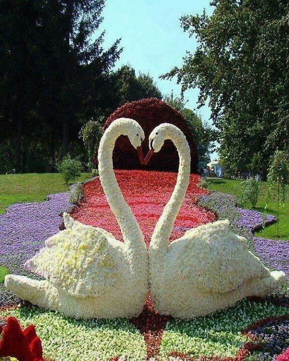 Amazing Topiary: 25+ Best Ideas About Topiary Garden On Pinterest
