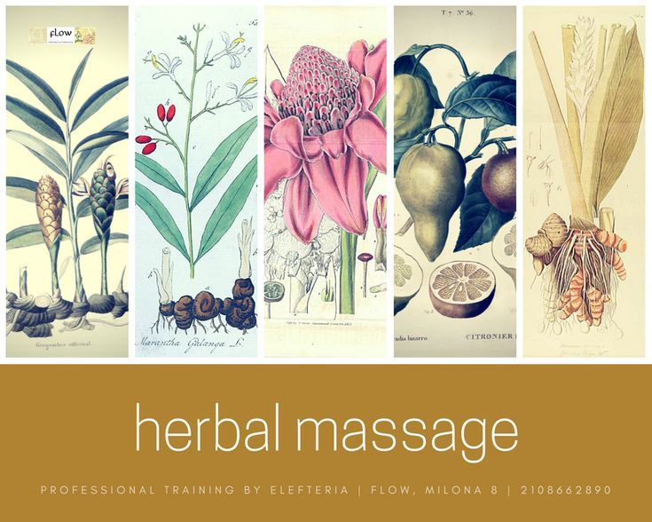 We 're having a class on Thai herbal ball massage on January 16th - only 40 euros! Yep, you 'll learn how to make the herbal compress as well. The anti-inflammatory herbs do great work for chronic problems of the muscles and the ligaments.  Herbal packs are very easy to make, and super cheap!  Click the link on our bio to visit our website.  #ThaiMassage #HerbalMassage #HerbalBall #herbalMedicine #AlternativeMedicine #ThaiYogaMassage #herbalCompress #HerbalPacks #LearnMassage #MassageSchool