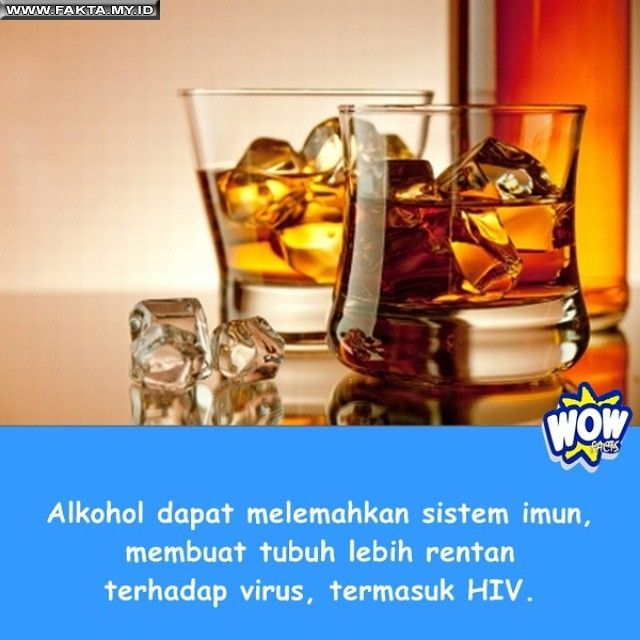Alkohol dapat melemahkan sistem imun - #Fakta #Faktual #Makanan