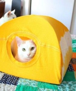 Basit Kedi Evi Yapımı