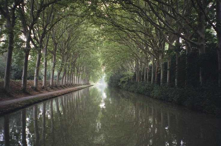 On the Canal du Midi, southern France ... best enjoyed on a drive yourself barge