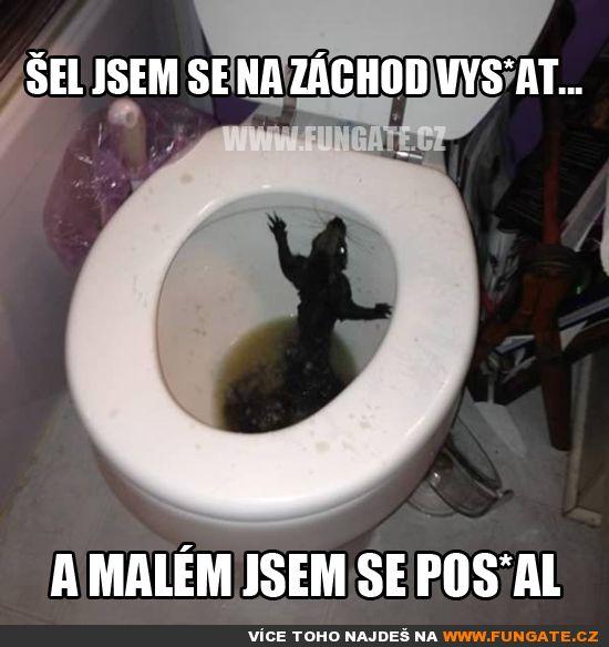 Šel jsem se na záchod vys*at…