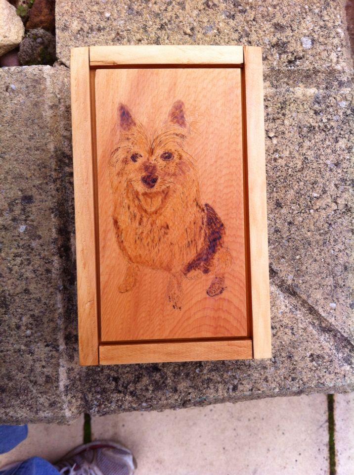 Huon pine dovetailed box