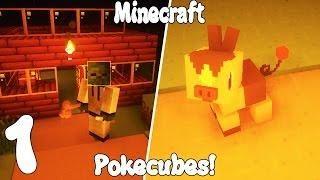 NUEVA SERIE! Minecraft SERIE DE MODS POKECUBOS MELENUDOS! Capitulo 1!