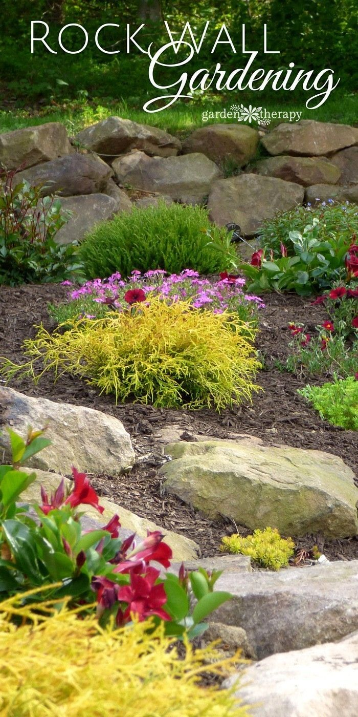 Rock Wall Gardening tips, ideas and inspiration. A rock wall garden has unique planting and care needs from an in ground garden and yet it also adopts some of the design rules of container gardening.