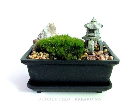 24 best mini jardin zen images on pinterest mini zen for Jardin zen miniature