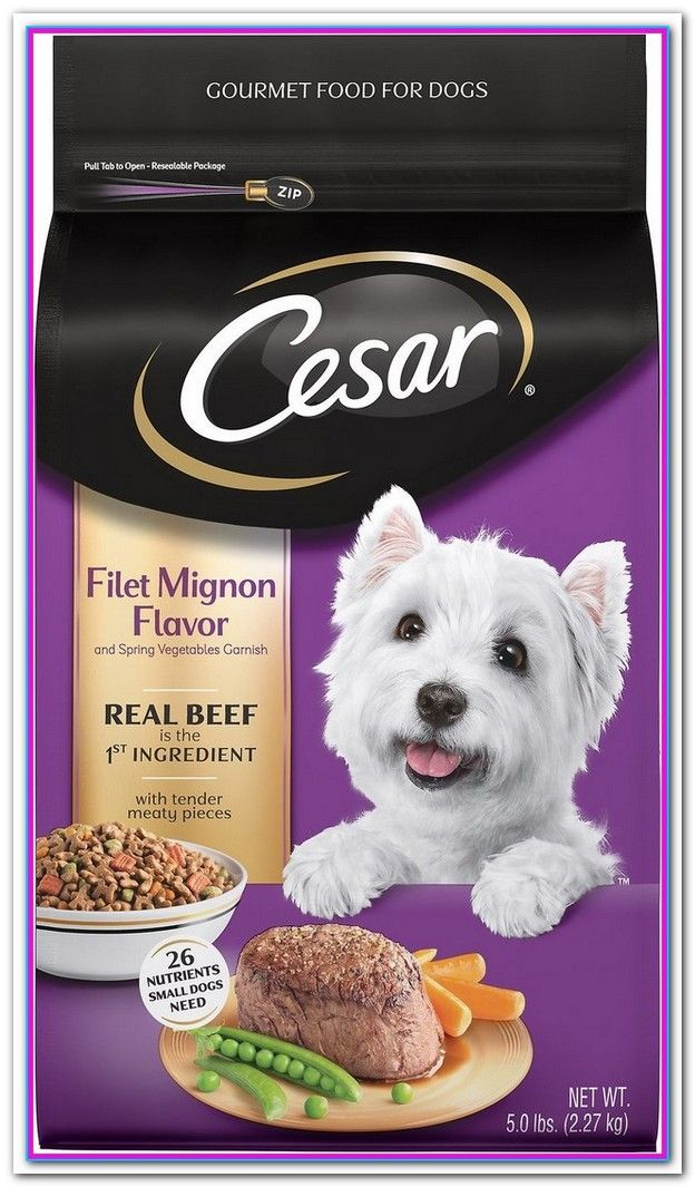 What Is The Best Dry Dog Food For Small Dogs Dog Food Recipes
