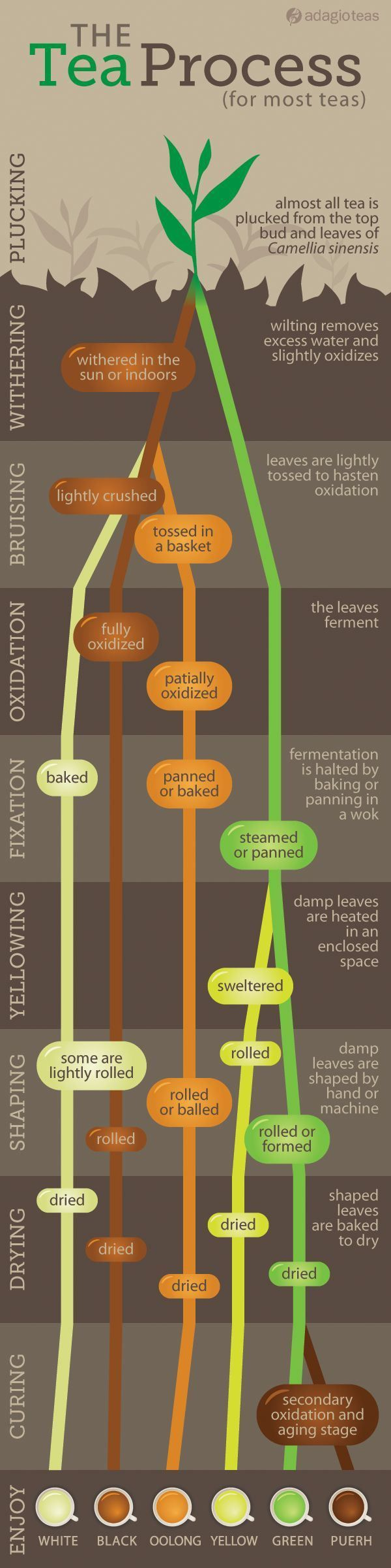 The tea process- simplified...via: