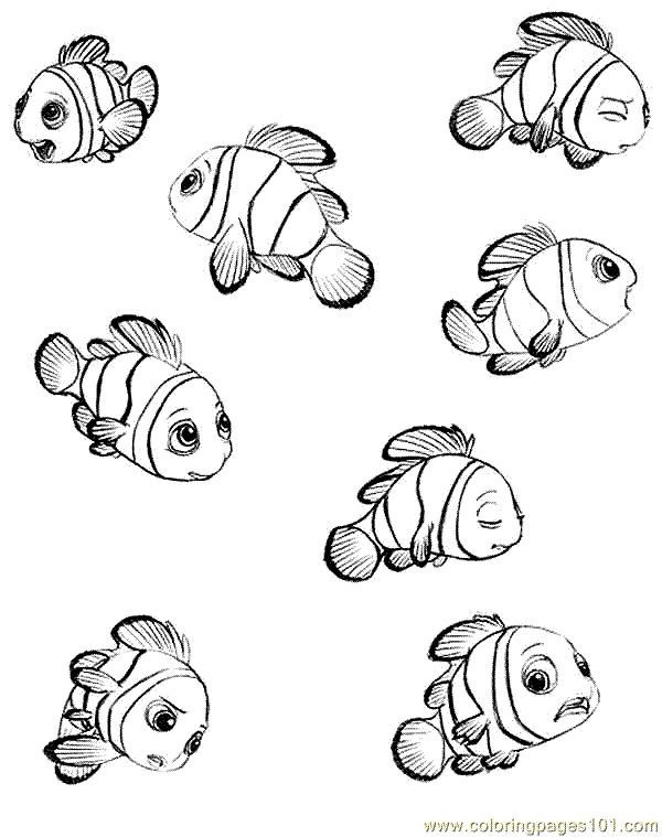 nemo coloring pages images google - photo#26
