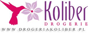 logo.png (300×114)