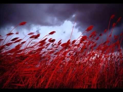 Zara - Kırmızı Buğday - YouTube