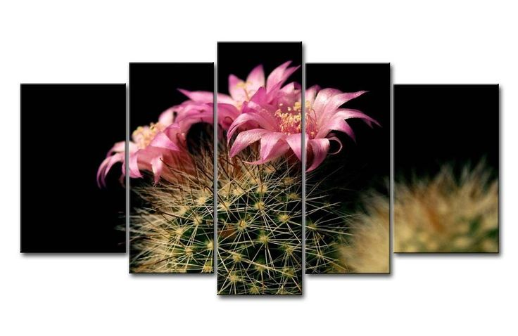 cheap photo canvas prints, print on canvas cheap, canvas photo prints cheap, large canvas prints cheap, canvas printing cheap, cheap canvas photo prints, Cheap Custom Canvas Print, Cheap Canvas Prints, Large animal Canvas Prints, abstract art canvas prints, Sports Canvas Prints,