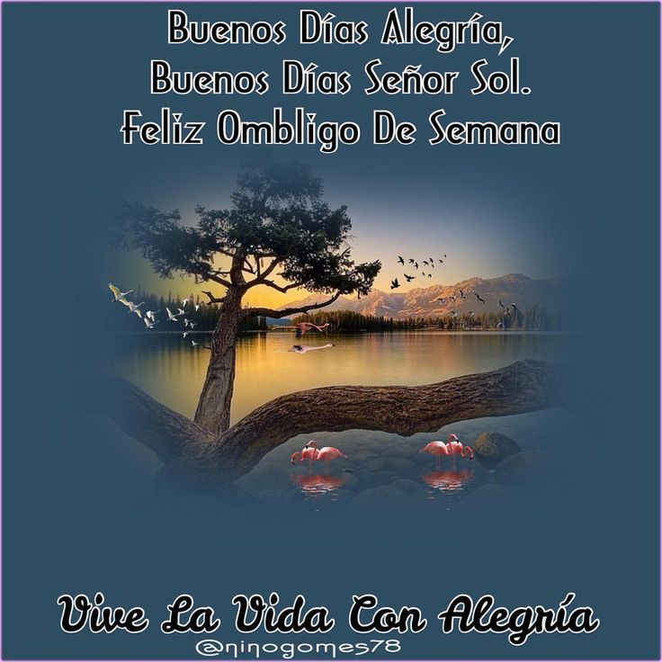 #GoodMorningLover's☀️💖🌻 Buenos Días Alegría,😀 Buenos Días Señor Sol.☀️ #FelizOmbligoDeSemana😀💖🌈🍃🌹🍃🌷🍃🌸🍃🌺🍃🌼 #ViveLaVidaConAlegria😀☀️🌻