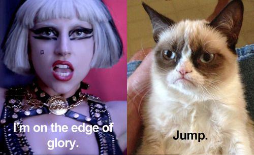 Lady Gaga Jump Like A Cat Video Memes