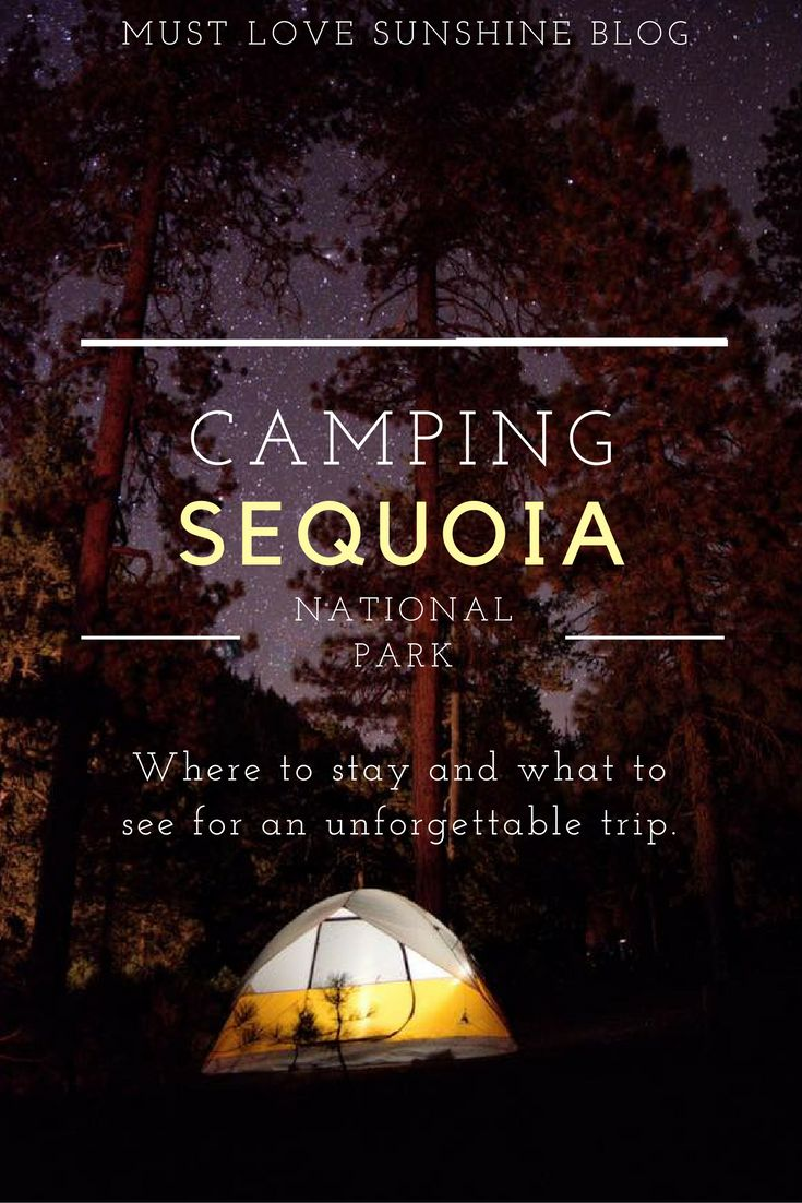 Camping Sequoia National Park | Camping trip | how to camp Sequoia | Sequoia must see | Sequoia must do | Camping California | California road trip | Sequoia trees