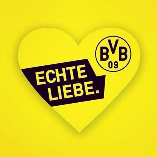 Borussia Dortmund Echte Liebe