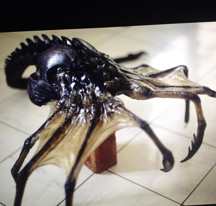 Xenomorph Queen Facehugger 34 best images about R...