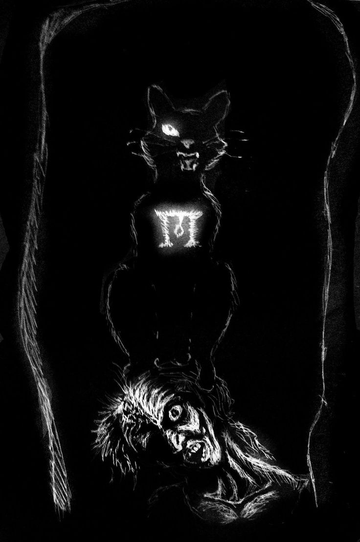an analysis of the psychosis of the narrator in the short story the black cat by edgar allan poe The black cat is a short story by american writer edgar allan poe it was first published in the august 19, 1843, edition of the saturday evening post.