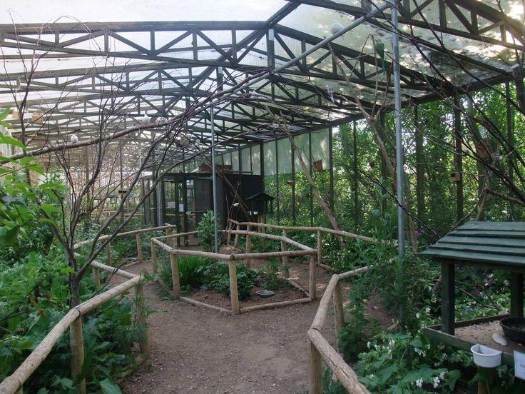 Outdoor Aviary Construction Tropical Bird Aviary Long