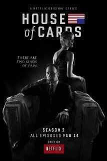 House of Cards.  Perfect entertainment for a cold January weekend when you don't want to put on real pants and go out.